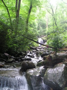 Smokey Mountain Photos
