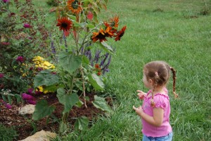 Kids and Gardens