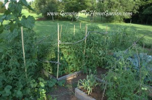 Gardening Rules to Live and Garden By
