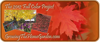 Fall Color – In the Garden – from Woodlawn TN!