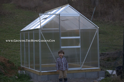 Harbor Freight Greenhouse – After High Winds