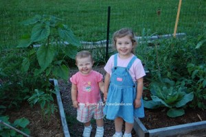 5 Ways to Have a Child Friendly Garden