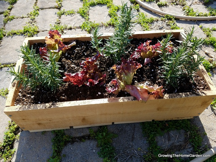Portable Planter Box Project