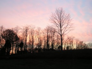 December Skyscapes