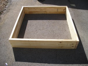 Building My Raised Beds