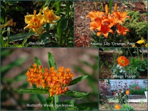 What Would A Tennessee Garden Be Without…