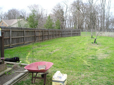 A Garden Remodel: The Fence Garden