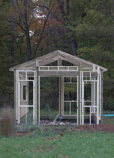 The Greenhouse Project: I Need Braces