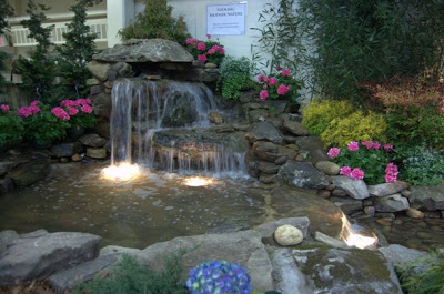 From the nashville lawn and garden show pictures of an Nashville home and garden show