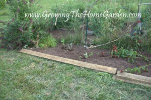 The Border Bed Outside of the Vegetable Garden