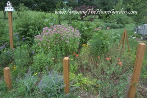 The Garden Blooms of June (in Tennessee)
