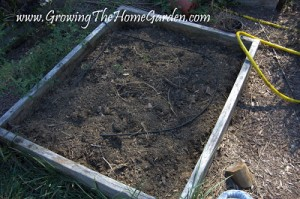 Growing The Fall Vegetable Garden Part 1