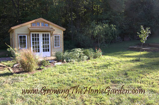 Garden Shed, Drainage Pathway and Loads of Dirt