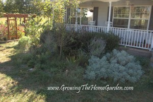 Front Porch Garden Remodel Part 4