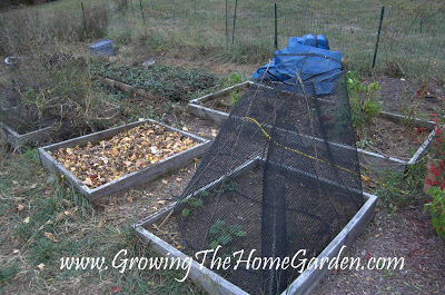 Garden Beds Cleaned Up For Winter Fall