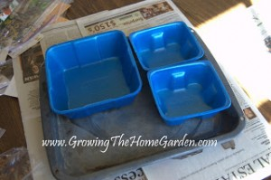 Sowing in Recycled Containers (Seed Sowing Saturday)