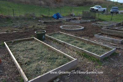 Preparing the Vegetable Garden in Spring