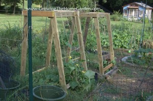Homemade Cucumber or Melon Trellises