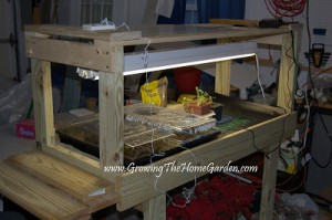 Plant Propagation Bench for Seedlings and Cuttings