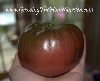 5 Vegetable Garden Design Tips