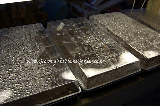 Seed-sowing-in-flats-on-heat-mats-12-2012-1