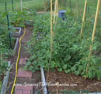 2013 Home Garden Project List
