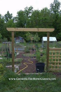 A Vegetable Garden Update (Early May 2013)