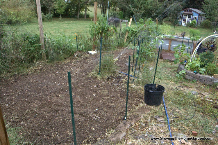Vegetable garden cleared of Bermuda grass