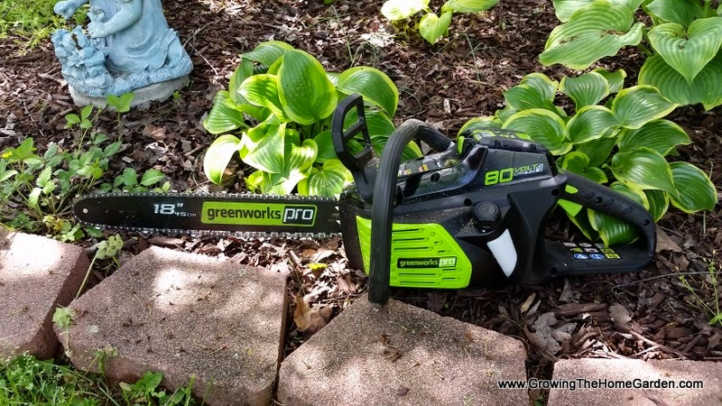 Greenworks Pro 80V 18 Inch Chainsaw Review