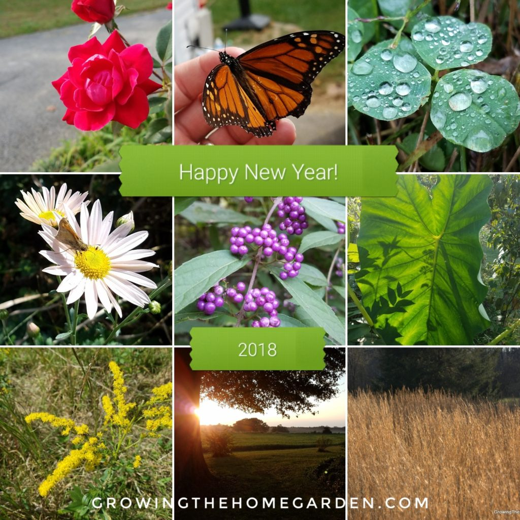 Happy new Year Gardeners!