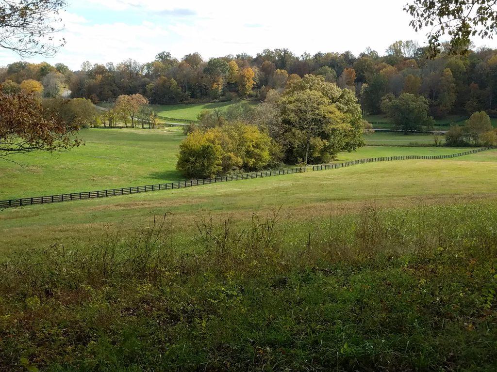 Farmland in Tennessee