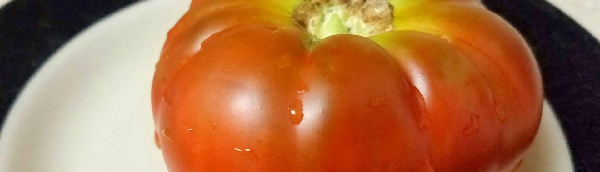 Tasmanian Chocolate Tomato