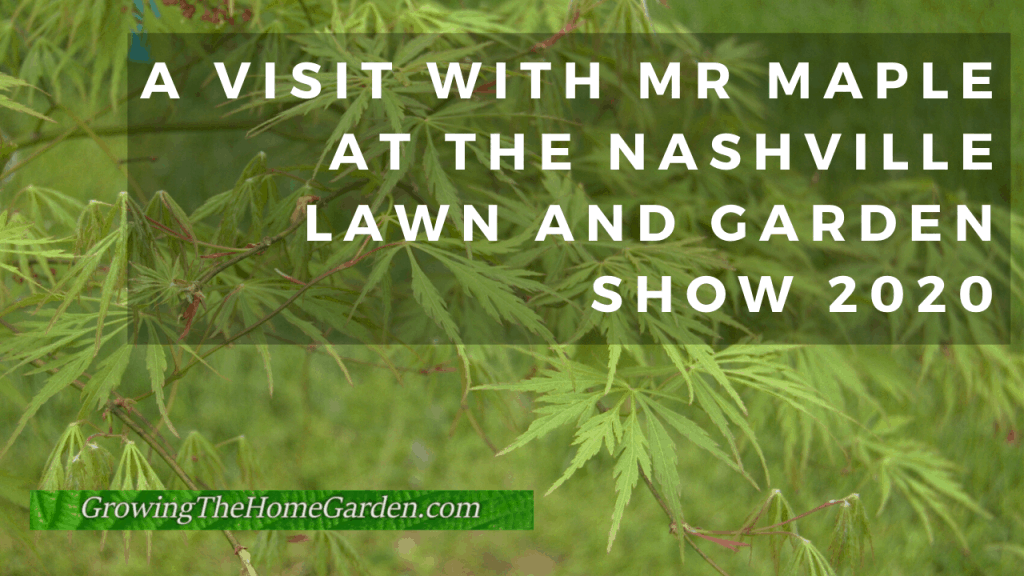 mrmaple interview Japanese maples at Lawn and Garden Show